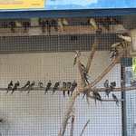 Photo de Vallee des Oiseaux