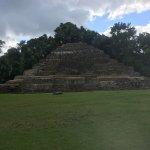 Foto de Lamanai Archaeological Reserve