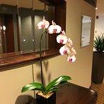 Lift lobby vanity mirror