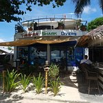 Thresher Shark Divers Photo