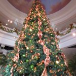 The Christmas tree in the main room of the building