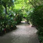 Foto Ramon's Village Resort