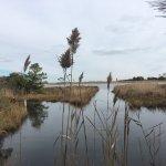 Gordons Pond