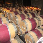 Barrel Room, Hess Winery and Art Museum, Napa, CA