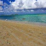 Фотография Melia Nassau Beach - All Inclusive