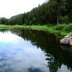 Spearfish Canyon-billede