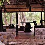 Photo de Jungle Retreat