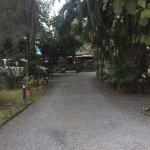 Photo de Palm Grove Service Villa