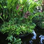The Watergarden Hotel & Spa Foto