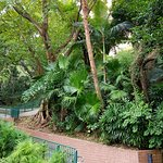 Hong Kong Zoological and Botanical Gardens