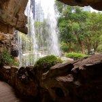 Hong Kong Park Foto