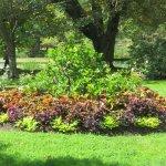 صورة فوتوغرافية لـ Halifax Public Gardens