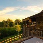 king arthurs willow deck