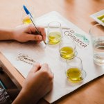 Degustación de aceites de oliva extra virgen