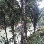Photo of El Portal de Champey
