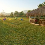 Beautiful clean spacious lawn for kids to play, hut with free local pastry snacks