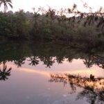 Photo de Taj Bekal Resort and Spa, Kerala