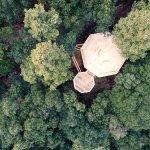 Photo of Les Cabanes dans les Bois