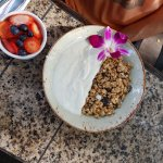 oatmeal and yogurt with fruit
