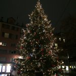 Christmas tree out front of Storchen