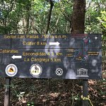 """The loop waterfall with some howler monkeys. Also the sign that directed us in the """"shorter"""" and"""