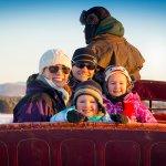 Holiday Horse Drawn Sleigh Rides