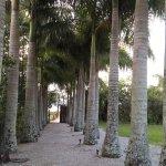 Bild från Hotel Torres da Cachoeira