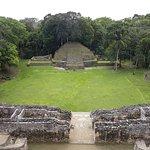 Photo of Caracol Mayan Ruins