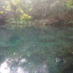 Baignade dans la lagune