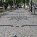 Mosaic tiles paved avenue with huge trees on both sides