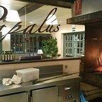 La Brasa del Restaurant Papalús