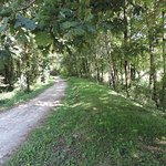 Voie Verte de Mazamet à Bédarieux proche Camping LESTAP