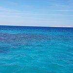 Photo of Ocean Diva Catamaran Sailing Cruises