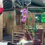 Photo of Romantic bamboo