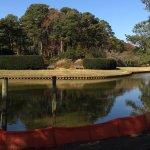 Photo of Norfolk Botanical Garden