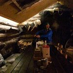 Bilde fra Green Dog Svalbard