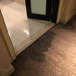 Soaked carpet throughout stay