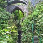 Photo of Devil's Bridge Falls