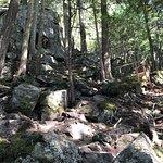 Foto de Blackcomb Ascent Trail