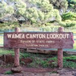 Waimea Canyon Lookout - quite chilly!