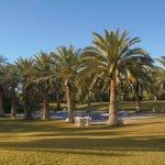 l'arrière de l'hôtel avec piscine dans jardin immense avec nombreux palmiers