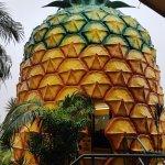 Pineapple entrance