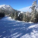 Jay Peak summit from Montrealer ski trail