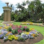 Garden at Sydney Royal Botanic Garden