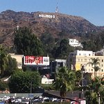 Hollywood Hills Foto
