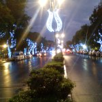 Photo of Paseo de Montejo