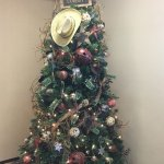 """So pretty at Christmas Time love the """"Western"""" decor"""