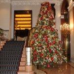 tree in lobby area