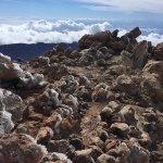 Volcan El Teide Foto