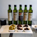 Tasting Olives and Oil